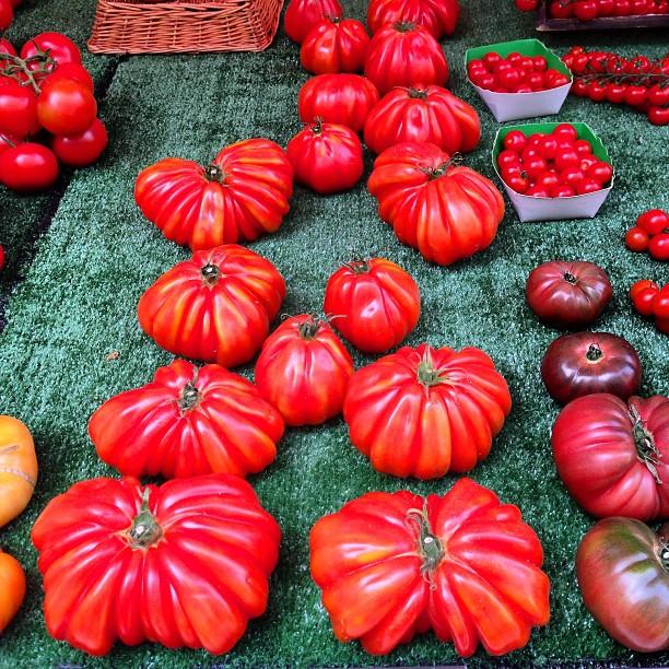Tomato inspiration in Paris